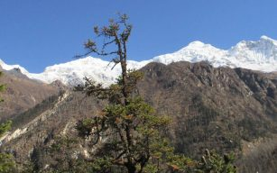 Ganesh Himal Ruby Valley Trekking